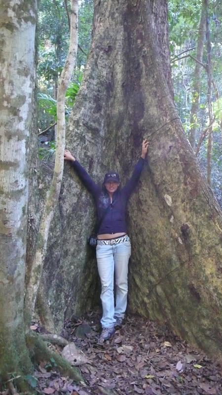 hab ne Ecke im Baum gefunden ;-)