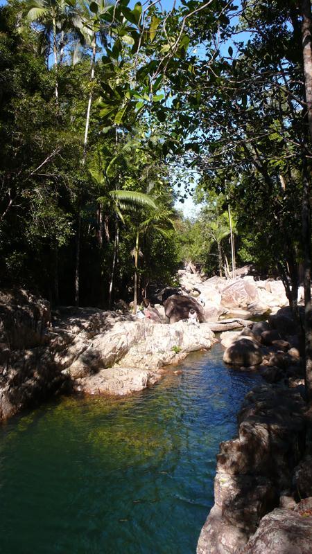 Dschungelfluß